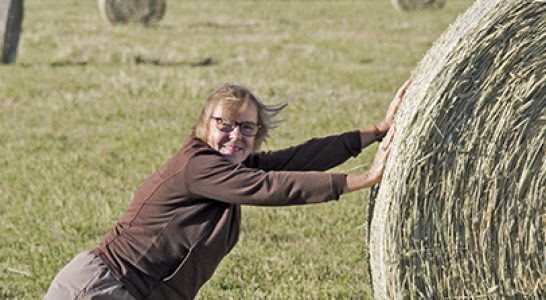 Christine rolling hay bale